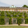 Schloss Sanssouci in Potsdam, Germany — Stock Photo #13278259