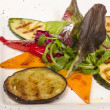 Grilled vegetables (zucchini, eggplant, peppers,) — Stock Photo