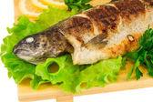 Roasted striped sea bass — Stock Photo