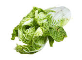 Chinese cabbage on white background — Stok fotoğraf