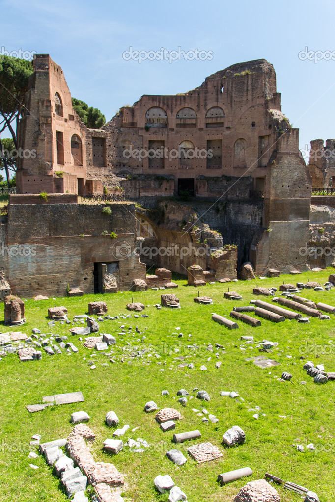 Roman ruins in Rome, Forum — Stock Photo #13736915