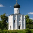 Church of the Intercession on the River Nerl — Stock Photo #14158667