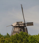 Old windmill in park sanssouci palace in Potsdam, Germany — Stock Photo