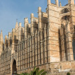 Dome of Palmde Mallorca, Spain — Stock Photo #15487361