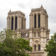 Notre Dame (Paris) — Stock Photo #15497291