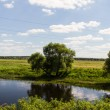 EuropeSummer River Landscape (Russia) — Stock Photo #15500701