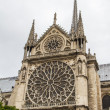 Notre Dame (Paris) — Stock Photo #15506471