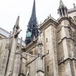 Notre Dame (Paris) — Stock Photo #15507105