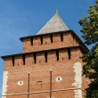 Kremlin wall at Nizhny Novgorod in summer. Russia — Stock Photo #15509193