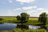 European Summer River Landscape (Russia) — Stock Photo