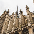 Notre Dame (Paris) — Stock Photo #15511675