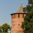 Kremlin wall at Nizhny Novgorod - Stock Photo
