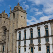 Panoramic view of the Porto Cathedral (Se Porto) - Portugal — Foto de Stock