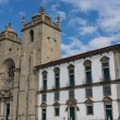 Panoramic view of the Porto Cathedral (Se Porto) - Portugal — ストック写真