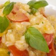 Photo of delicious risotto dish with herbs and tomato on white b — Stock Photo #15559171