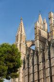 Dome of Palma de Mallorca — Stock Photo