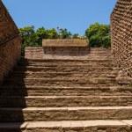 Roman ruins in Rome, Forum — Stock Photo #15568869