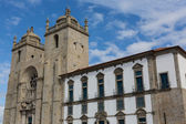 Panoramic view of the Porto Cathedral (Se Porto) - Portugal — Stockfoto