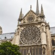 Notre Dame (Paris) — Stock Photo #15572361