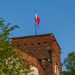 Royal castle in Wawel, Krarow - Stock Photo