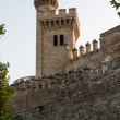 Almudaina  of Palma de Mallorca in Majorca Balearic island — Photo