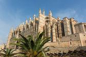 θόλο της πάλμα ντε μαγιόρκα, ισπανία — Φωτογραφία Αρχείου