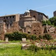 Roman ruins in Rome, Forum — Stock Photo #15590985