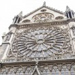Notre Dame (Paris) — Stock Photo #15593827