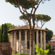 Stock Photo: Rome - Vesttemple