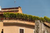 Trastevere 区罗马 — 图库照片