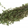 Fresh thyme - Stock Photo