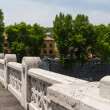 Rome bridges — Stock Photo #22637541
