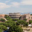 Colosseum of Rome, Italy — Stock Photo #22974876