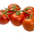 Stock Photo: Red ripe tomatoes on branch