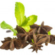 Star Anise and Mint - Stock Photo