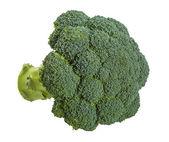 Brokoli — Stock Photo