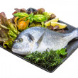 Fresh raw dorada — Stock Photo