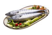 Fresh Atlanticmackerel — Stock Photo