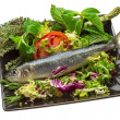 Fresh Herring — Stockfoto #24691367