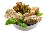 Fresh oyster — Stock Photo