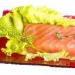 Salmon fillet garnished — Stock Photo #25787413