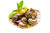 Escargot with asparagus, rosemary, thymus and tomato — Stock Photo