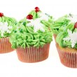 Studio isolated creamy green cupcake — Stock Photo #26079879