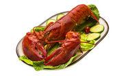 Duże homara — Zdjęcie stockowe