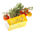 Slice of Roquefort cheese with tomato and herbs — Stock Photo #26357905