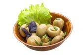 Ripe fresh Champignon — Stock Photo