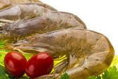Big raw shrimps — Stock Photo