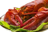 Large Lobster — 图库照片