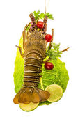 Raw spiny lobsters — Stock fotografie