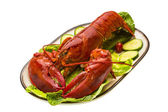 Large Lobster — Stock Photo